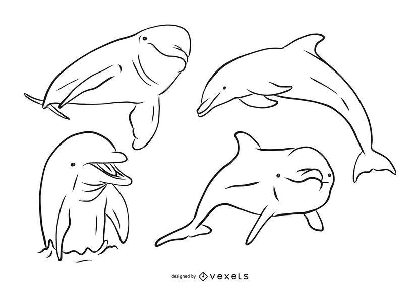 Dolphin Stroke Illustration Set