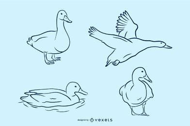 Conjunto de ilustração vetorial de pato