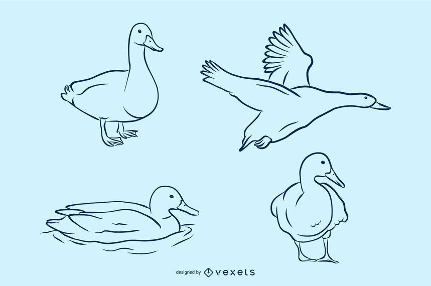 Conjunto de ilustración vectorial pato