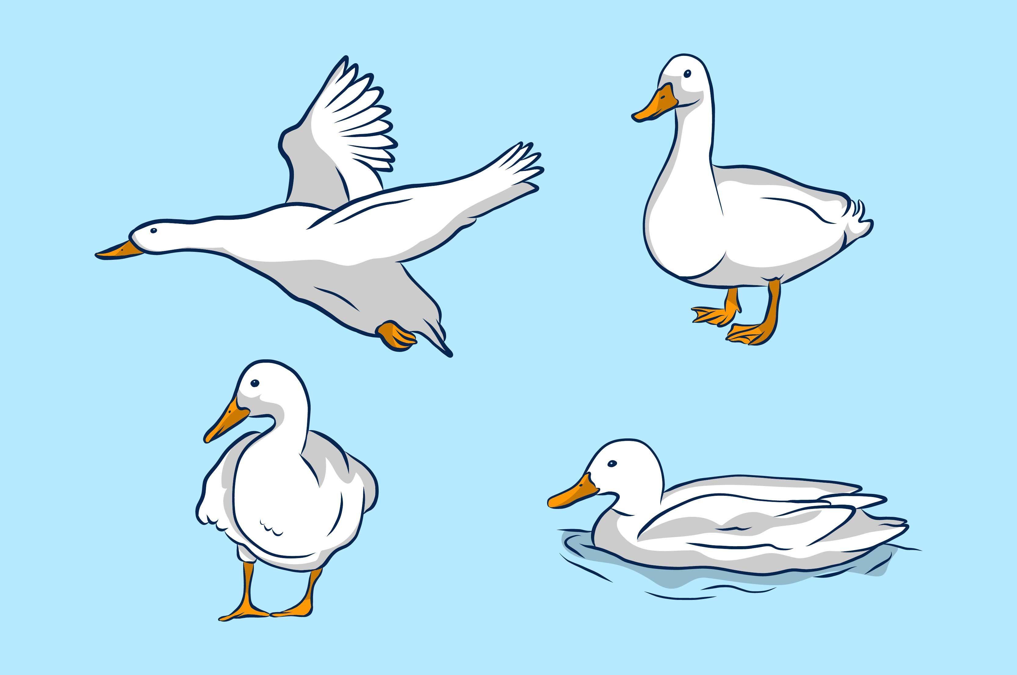 Conjunto de ilustración de pato blanco