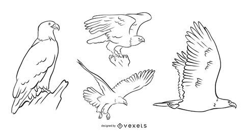 Conjunto de vetores de águia