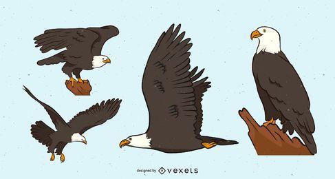 Conjunto de vetores de águia careca