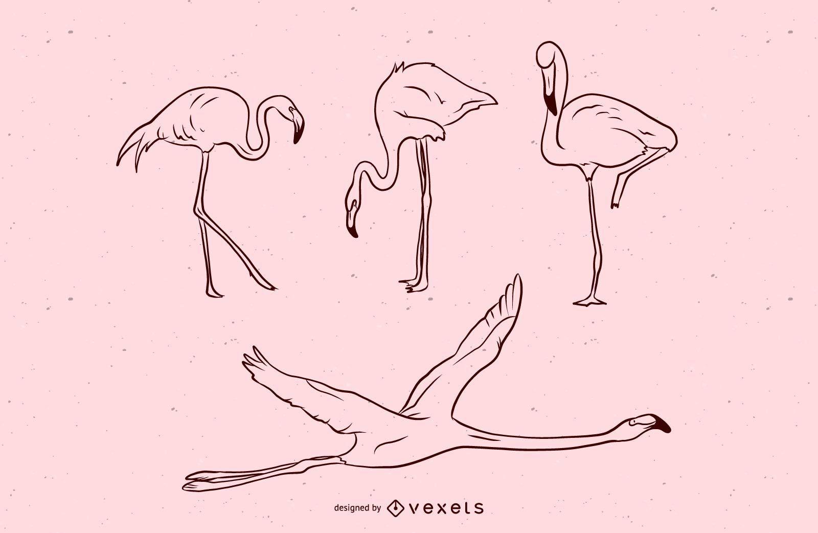 Conjunto de ilustración de trazo de flamenco