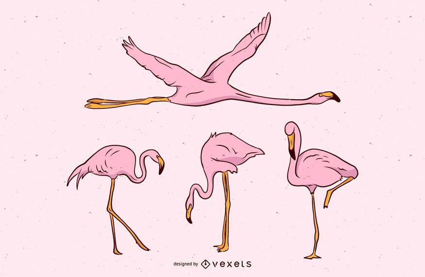 Conjunto de vectores de flamenco rosa