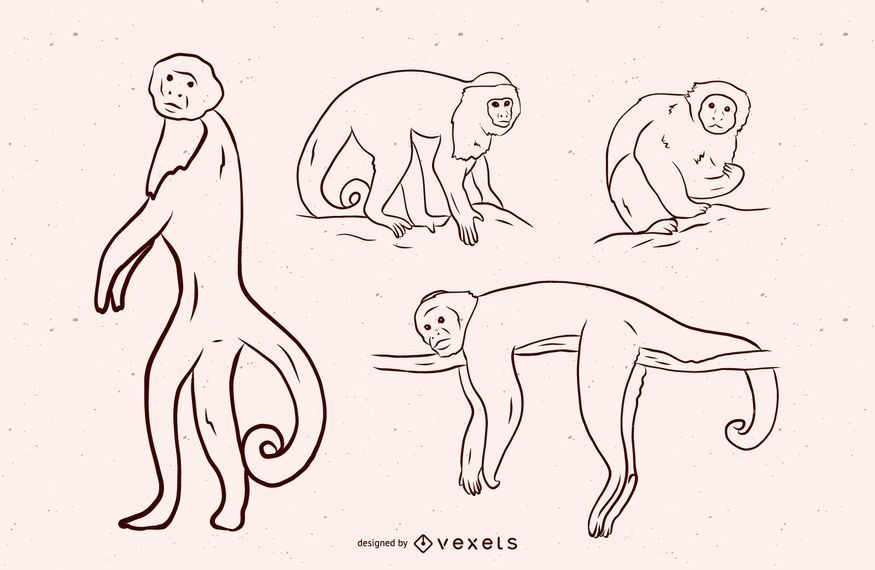 Affe-Schwarzweiss-Illustrations-Design