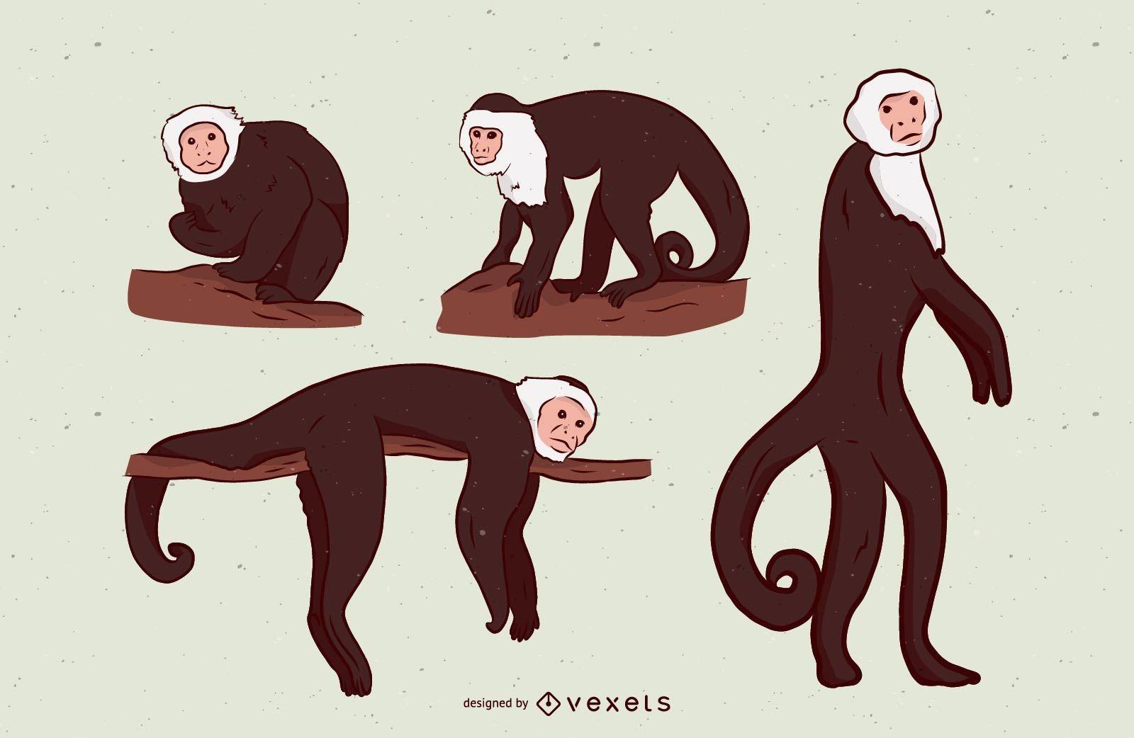 Diseño de conjunto de ilustración de mono