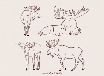 Moose Vector Illustration Set