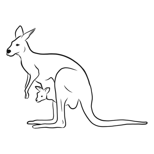Kangaroo and joey sketch Transparent PNG