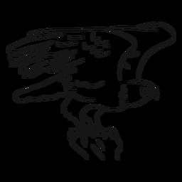 Vector de dibujo de águila calva volando