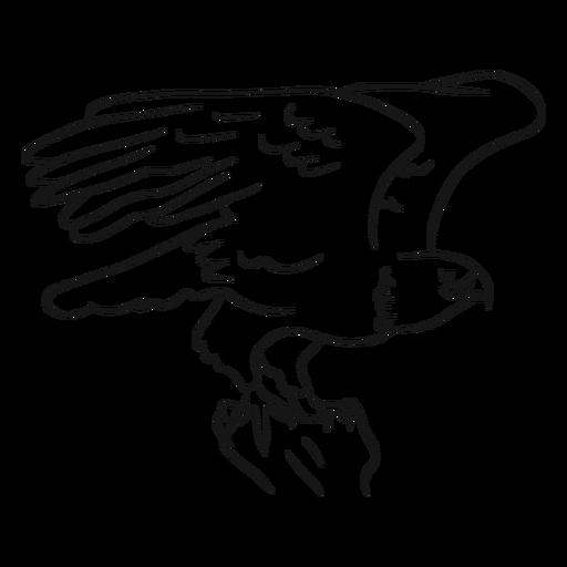 Bald Eagle Sketch Max Installer