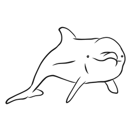 Vector de esbozo de delfines nariz de botella