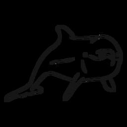 Vetor de esboço de golfinho-nariz-de-garrafa