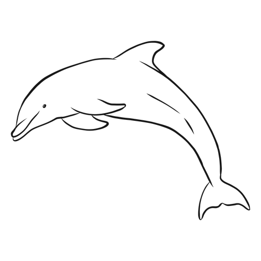 Dolphin diving in sketch Transparent PNG