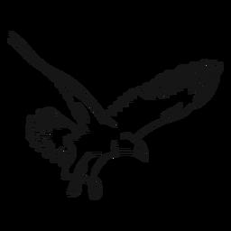 Águila en vuelo dibujo vectorial