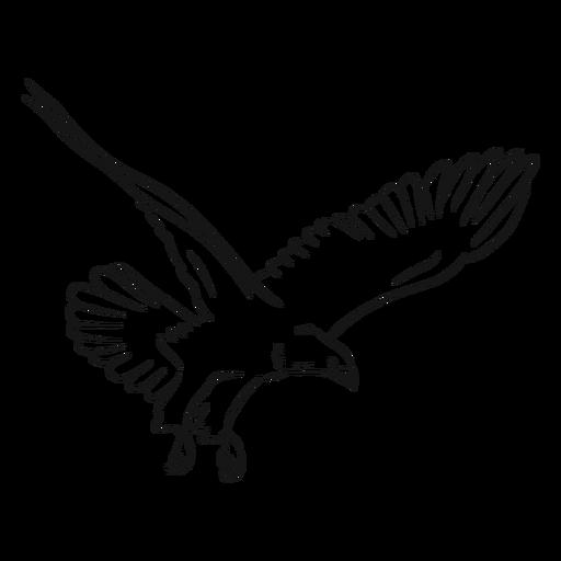 Eagle in flight sketch vector Transparent PNG