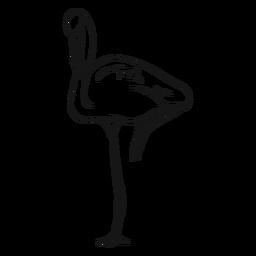Flamingo de pie en un bosquejo de una pierna