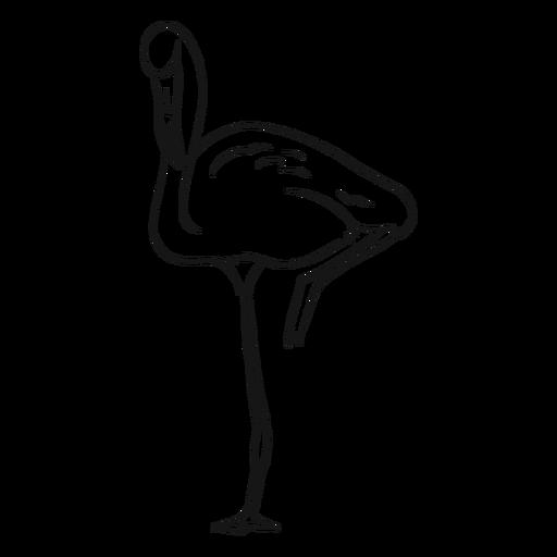 Flamingo, der auf einer Beinskizze steht Transparent PNG