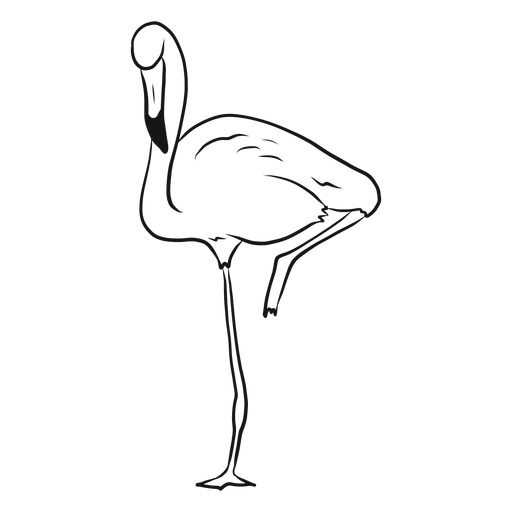 Flamingo standing on one leg sketch Transparent PNG