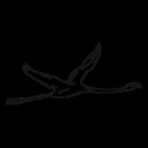 Flying flamingo sketch illustration Transparent PNG