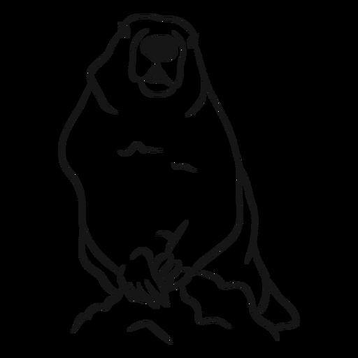 Vector de boceto animal de la marmota Transparent PNG