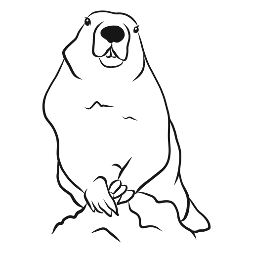 Vetor de esboço animal da marmota Transparent PNG