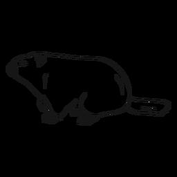 Vector de boceto de la vista lateral de la marmota