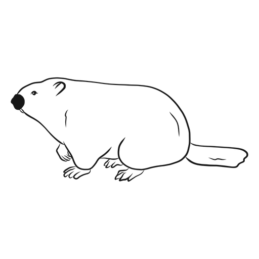 Groundhog side view sketch vector Transparent PNG