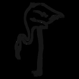 Mão, desenhado, flamingo, ilustração