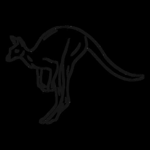 Jumping kangaroo sketch illustration Transparent PNG