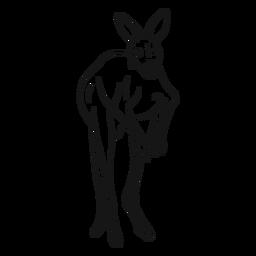 Ilustración de dibujo de canguro