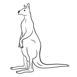 Vector de boceto de pie de canguro
