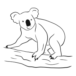 Vector de dibujo de oso koala