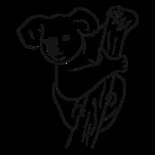 Koala abrazando vector de bosquejo de árbol Transparent PNG