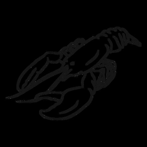 Ilustração de esboço animal de lagosta Transparent PNG