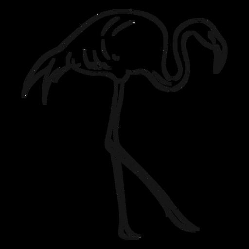 Esboço de flamingo andando alto Transparent PNG