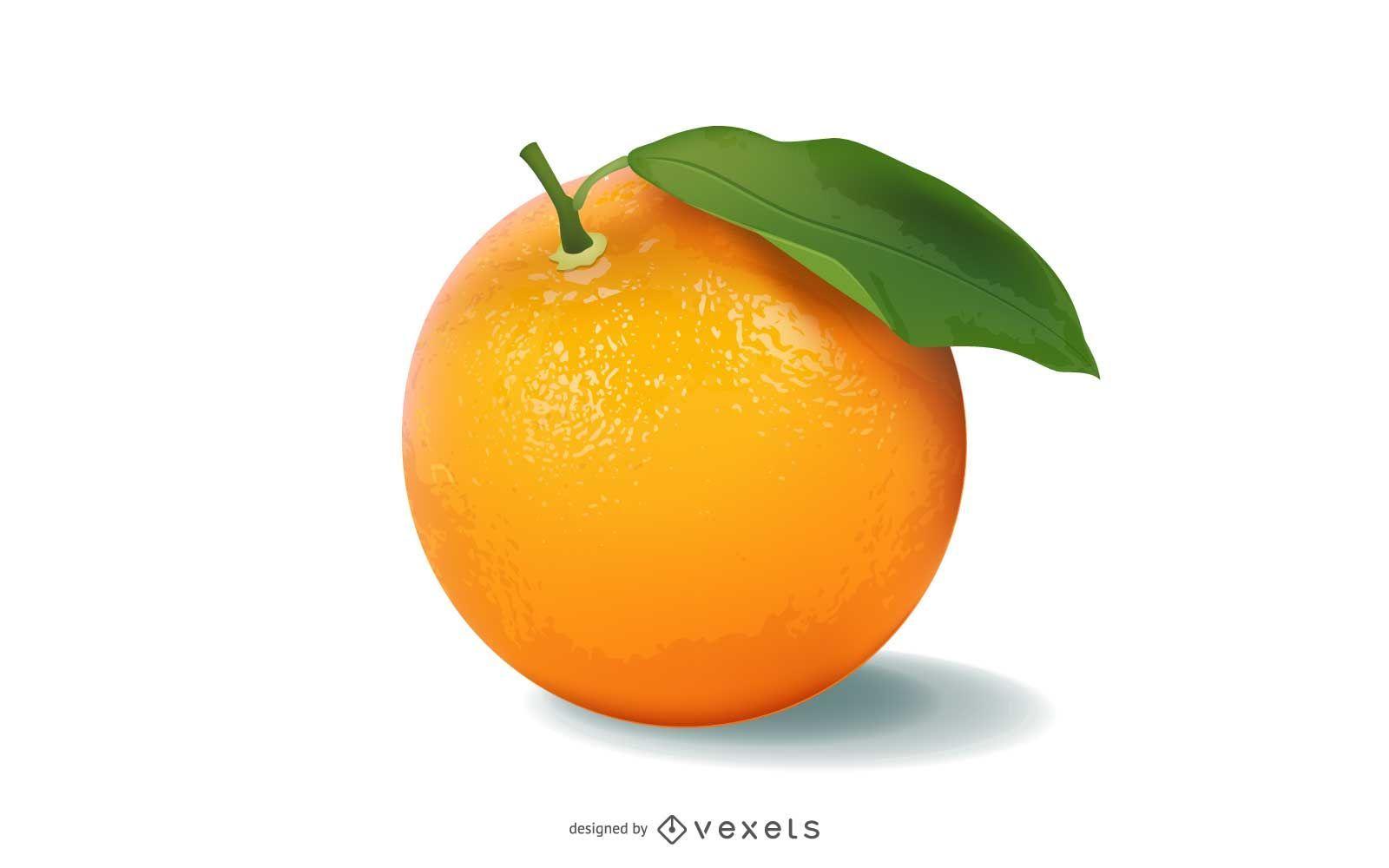 Vector naranja realista