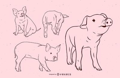 Pig Stroke Illustration Set