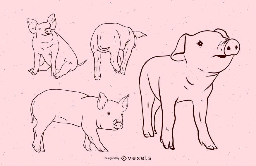 Pig Stroke Illustration Set