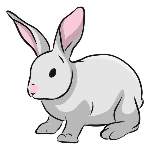Bunny rabbit muzzle ear illustration Transparent PNG