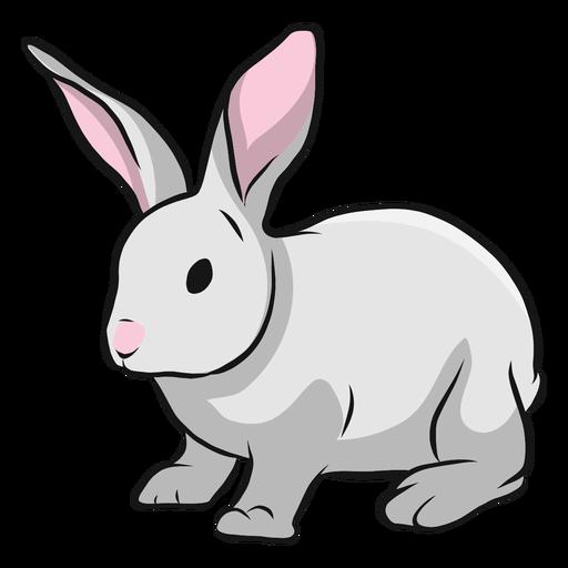 Bunny rabbit muzzle ear illustration