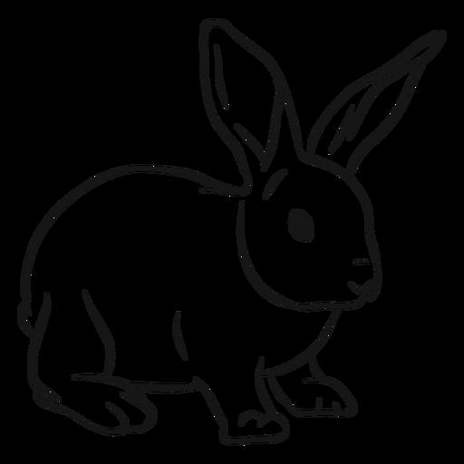 Bunny rabbit muzzle ear sketch Transparent PNG