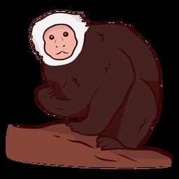 Ilustração de perna de macaco-prego