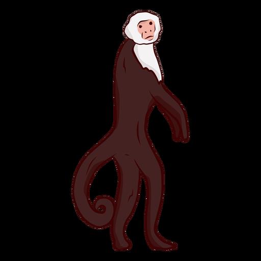 Ilustração de perna de rabo de macaco-prego Transparent PNG