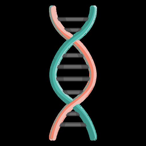 Ilustración del gen de la cadena de adn