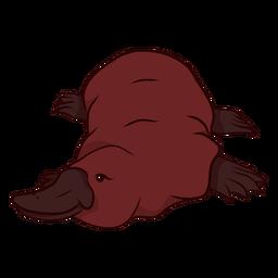 Ilustración de patas pico de ornitorrinco