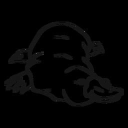 Pato de pato platypus pico bosquejo de la pierna