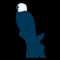 Adler Schnabel Silhouette