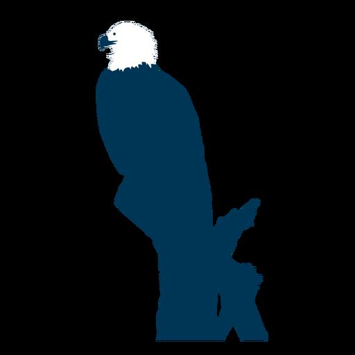 Eagle beak silhouette Transparent PNG