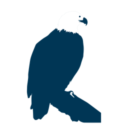 Silhueta de cauda de bico de águia