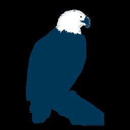 Silueta de cola de pico de águila